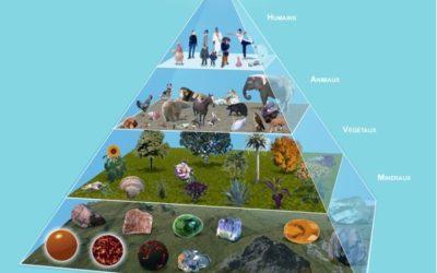 Meditación y Oración por los Reinos de la Naturaleza.